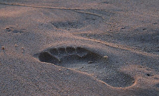 footprint-908273_640